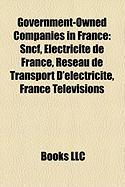 Government-Owned Companies in France: Electricite de France