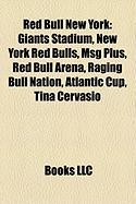 Red Bull New York: Giants Stadium